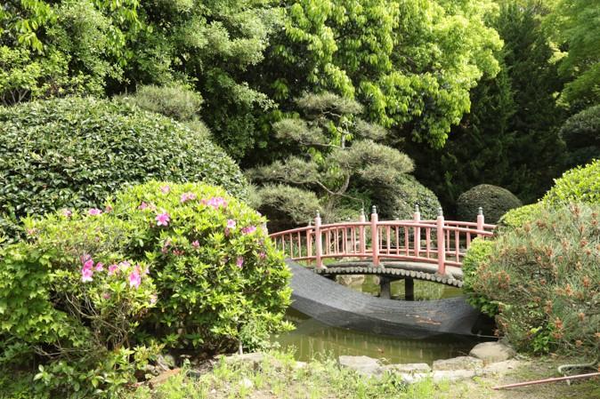 大阪護國神社の森林