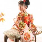 大阪の七五三写真撮影スタジオ・ハニーアンドクランチの3歳女の子和装のフォトギャラリーA086