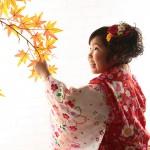 大阪の七五三写真撮影スタジオ・ハニーアンドクランチの3歳女の子和装のフォトギャラリーA151