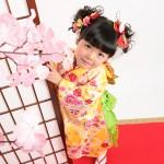 大阪の七五三写真撮影スタジオ・ハニーアンドクランチの3歳女の子和装のフォトギャラリーA189