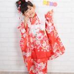 大阪の七五三写真撮影スタジオ・ハニーアンドクランチの3歳女の子和装のフォトギャラリーA031