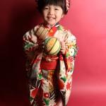 大阪の七五三写真撮影スタジオ・ハニーアンドクランチの3歳女の子和装のフォトギャラリーA071
