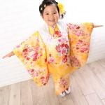 大阪の七五三写真撮影スタジオ・ハニーアンドクランチの3歳女の子和装のフォトギャラリーA123