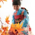 大阪の七五三写真撮影スタジオ・ハニーアンドクランチの7歳女の子和装のフォトギャラリーB176