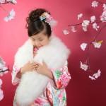 大阪の七五三写真撮影スタジオ・ハニーアンドクランチの7歳女の子和装のフォトギャラリーB194
