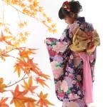 大阪の七五三写真撮影スタジオ・ハニーアンドクランチの7歳女の子和装のフォトギャラリーB210