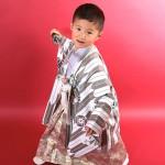 大阪の七五三写真撮影スタジオ・ハニーアンドクランチの男の子の和装のフォトギャラリーC160