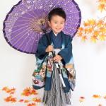 和傘ともみじ。