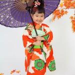 もみじと和傘、定番人気。