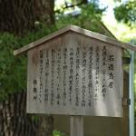 fujinomori_g03
