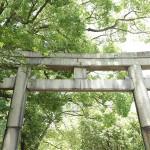 fujinomori_g04