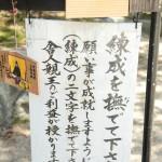 fujinomori_g18