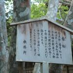 fujinomori_g21