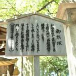 fujinomori_g33