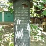 fujinomori_g40