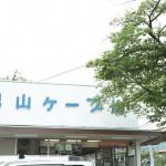 iwashimizu_g03
