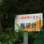 iwashimizu_g09