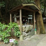 iwashimizu_g12