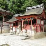 iwashimizu_g33