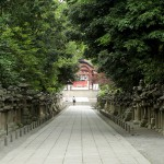 iwashimizu_g44