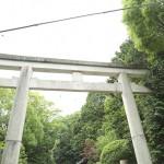iwashimizu_g45