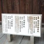 kitano_g25