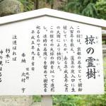 matsunootaisha_g19