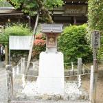 matsunootaisha_g29