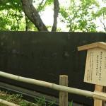 nagaokatenmangu_g08