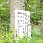 nagaokatenmangu_g47