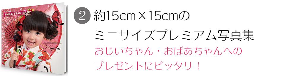 大阪で七五三写真撮影ならハニーアンドクランチのプレミアム写真集コース2